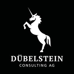 Dübelstein Consulting AG